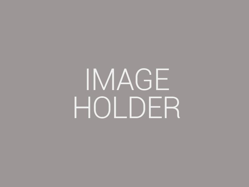 Image-holder-1